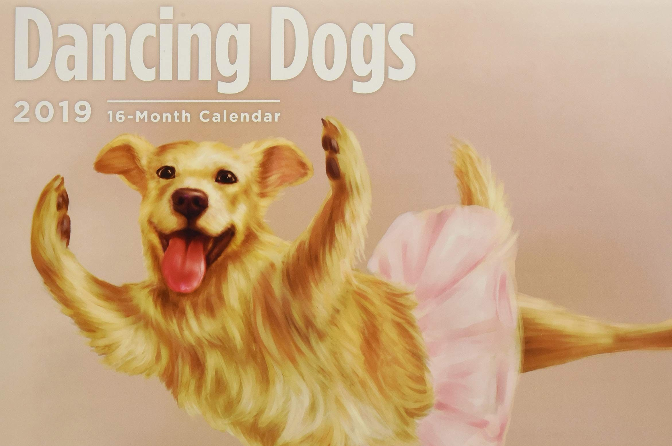 Dancing Dogs 2019
